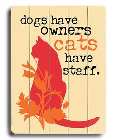 'Cats Have Staff' Wall Plaque by ArteHouse #zulily #zulilyfinds