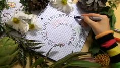 Mathemagician Vi Hart Explains Spirals and Fibonacci Numbers in Doodles and Wegetables - All her movies are great!