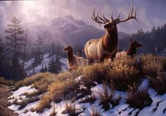 Shots in the Distance - Elk Painting by Greg Alexander