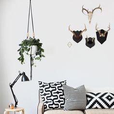 Indoor hanging planters | Lonny.com