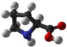 กรดอะมิโน (Amino Acid) คือ? มีอะไรบ้าง? ประโยชน์ของกรดอะมิโน !!