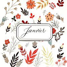 Bujo, janvier, monthly bujo, january Bujo, Illustrations, Lettering, Pattern Ideas, Flower Power, January, Doodles, Flowers, Cards