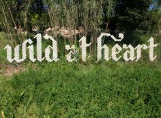 Wild At Heart by Anna Garforth - great way to dress up a cyclone fence