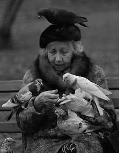 oh...what a sweet lady..plus, I'm jealous! I'd love to have birds do that with me.  Bird Lady