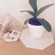 • instant • mood • #instantfilter @inspiredtrends_homedecor #inspiredtrendshomedecor #instant #inspirationmonday #marbleplatter #marble #octagon #platter #mothersdayideas #interiorlovers #home #homedecor #melbourne #gemstones #crystals