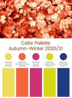 Color Palette From Image, Fall Color Palette, Color Palate, Fall 2017 Colors, Winter Colors, Summer Colors, Pantone Colour Palettes, Pantone Color, Summer Color Palettes