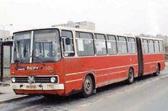 """Autobus Ikarus (""""Harmonika"""")"""