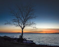 Landscape Photography  The Tree at by ThirdwindPhotography on Etsy