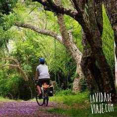Andrés Calla recorriendo la misteriosa isla Martín García en Argentina.  www.lavidadeviaje.com www.selkn.cl  #lavidadeviaje #cicloturismo #selkn