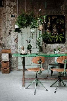 Bring the outside in with greenery and living plants