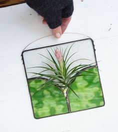 Stained Glass Panel Air Plant Holder Nouveau Green by glassetc