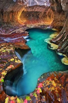 Emerald Pool at Subway Zion National Park, Utah