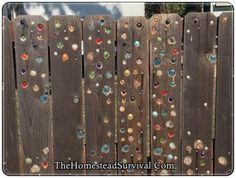 How to add glass marbles to a garden fence diy project is detailed in this step . How to add glass marbles to a garden fence diy project is detailed in this step by step tutorial. You will be amazed at how truly easy it is to add a . Diy Garden Fence, Backyard Fences, Easy Garden, Fence Landscaping, Landscaping Design, How To Garden, Garden Gates And Fencing, Landscaping Melbourne, Fence Planters