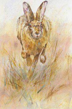 Tiney - Running hare Kate Wyatt