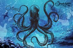 Check out Octopus Monster by sin9lefighter on Creative Market