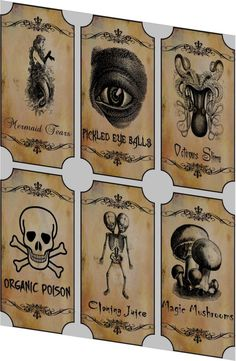 Potion Bottle Sticker Labels Voodoo New Orleans Halloween Pickled Eye Balls Skull, Poison, Mermaid Tears Wine Mardi Gras 6 large bottle label stickers apothecary labels: set of 6 bottle label stickers Each label is cut and ready to use Halloween Apothecary Labels, Halloween Bottle Labels, Halloween Potions, Theme Halloween, Halloween Stickers, Halloween Projects, Holidays Halloween, Vintage Halloween, Halloween Crafts
