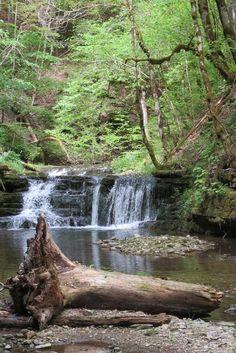 Simple Wandenr Sie den Genie erpfad und Premiumweg an der Gauchachschlucht am Schluchtensteig im Naturpark S dschwarzwald entlang