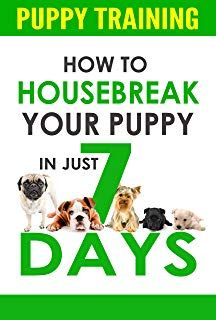 Puppy Training How To Housebreak Your Puppy In Just 7 Days Puppy