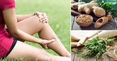 5+antiinflamatorios+naturales