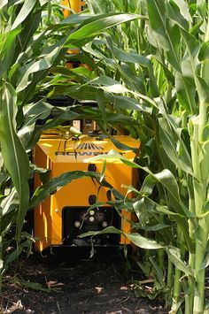 Over the last years we have seen a strong trend towards more agricultural robots able to perform a wide range of agricultural chores. These robots are e ...