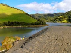 Lake Wainamu, Bethells Beach, West Auckland, New Zealand New Zealand Houses, Milford Sound, New Zealand Travel, South Island, Countries Of The World, Auckland, Travel Around, West Coast, Cool Pictures