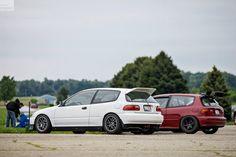 Live Sports Civic EG6 Hatchback Rear Wing Spoiler Rare Brand New