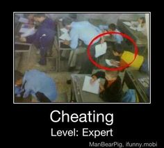 expert in cheating