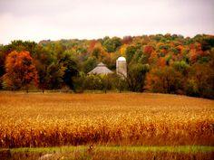 Wisconsin may be flat, but its beautiful!