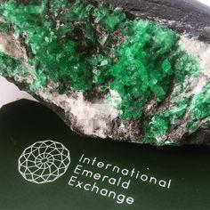 Green goodness. #rough #emerald #emeralds #colombianemerald #colombianemeralds…