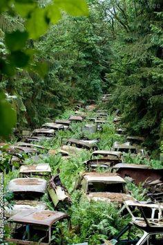 Achtergelaten auto's in de Ardennen na WO II