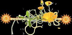 ® Imágenes y Gifs Animados ®: BARRAS O SEPARADORES Dandelion, Divider, Gifs, Flowers, Plants, Blog, Barbell, Dandelions, Blogging
