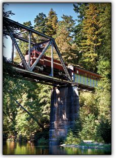 Departing from the Santa Cruz mountains, travel through Henry Cowell Redwoods State Park, down the scenic San Lorenzo River Gorge, across a 1909 steel truss bridge and through an 1875 tunnel before arriving at the Santa Cruz Beach Boardwalk.