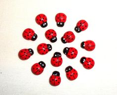 wooden ladybug stickers