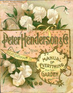 Peter Henderson plant catalogue, 1896 Sweet Peas