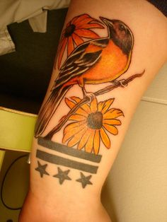Oriole tattoo....what's not to love
