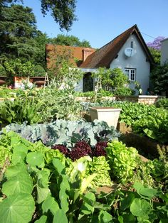 Great Gardening Advice On Great Organic Gardening