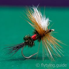 Made famous by Lee Wulff, this variation of the royal coachman uses dark hair from a moose body as a tail in place of the golden pheasant tail, and calf hair for the wing in place of quill slips. The distinctive royal body made from peacock and red floss body are retained.
