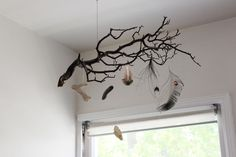 "A ""nature mobile"" with little natural curiosities hung down from the branches."