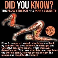 Plow stretch @yourfunctionalbody - 1. Begin by lying flat on your back with your legs extended and your arms at your sides, palms down. On…