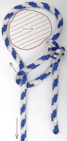 How to Tie a Double Running Bowline Knot to a tree limb