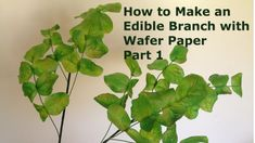How to make an Edible Branch with Wafer Paper Part 1