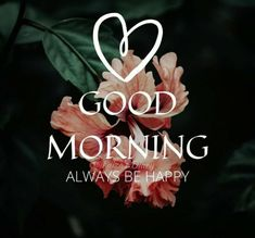 Good Morning Good Night, Good Morning Images, Good Morning Quotes, Good Day, Morning Blessings, More Images, First Love, Blessed, Christmas Ornaments