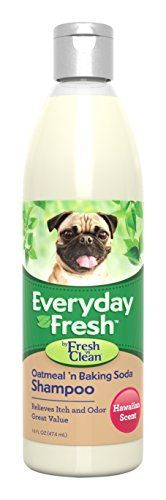 Fresh n Clean Everyday Fresh Oatmeal n Baking Soda Shampoo 16 oz * Find out more about the great product at the image link.