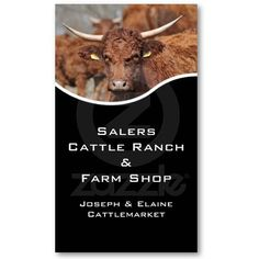 Salers cow cattle farm or ranch business card