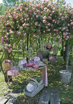 Just love this as a setting for one of our Afternoon Tea Hen Parties