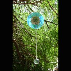 Old CDs make excellent bird scarers for trees and garden plants