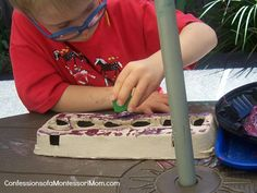 Montessori Egg Carton Activities Photo by Lisa Nolan of Confessions of a Montessori Mom
