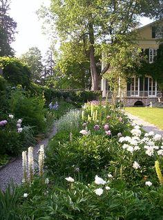 White flowers dot a pretty garden