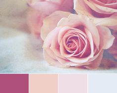 Pink Roses Shabby Chic Decor Shades Of Pink