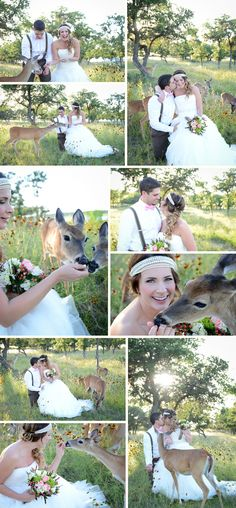 Ummm.... Guys, can we have a deer at the wedding?!?! Just because I love them!!!! ;))))))